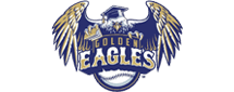 Symmetry-Physiotherapy-Golden-Eagles-Logo